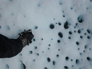 Cryoconite holes - active and diverse microbial habitats that might freeze under seasonal snow in winter, then thaw out during spring and summer