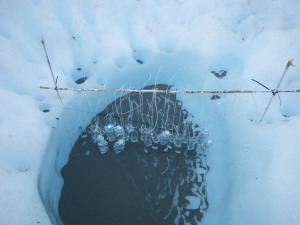 Bio-incubation experiments for measuring nutrient fluxes on the Greenland ice sheet