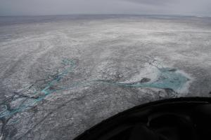 This photo (taken by Chris Bellas) illustrates the coverage by cryoconite, algae and other impurites in the interior of the Greenland ice sheet