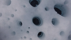 The beautiful cryoconite at S6, Greenland ice sheet