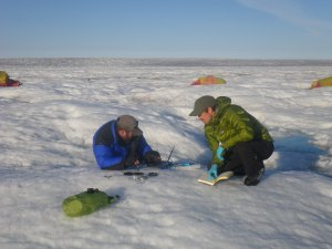 Tris Irvine-Fynn and I studying cryoconite on the Greenland Ice Sheet (ph. A Edwards)