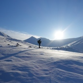 Skiing to field site in Svalbard