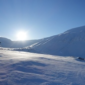 Field site in Svalbard
