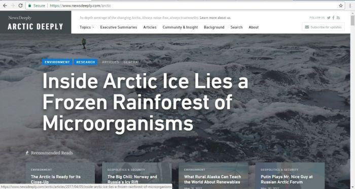 arcticdeeply